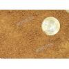 Billede af kornstørrelsen på Gul Biocal, perfekt som erstatdning for terrarie sand hos leopardgekkoer