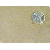 Billede af kornstørrelsen på Baige Biocal, perfekt som erstatdning for terrarie sand hos skægagamer