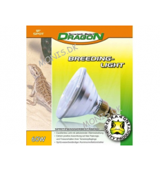 Dragon - Breeding Light 60w