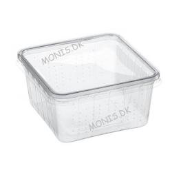 Foderdyrs æske til pakning og opbevaring af insekter  eller udrugning af reptil og krybdyrs æg (10 stk. med låg pr. vare)