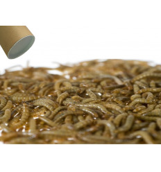 500g Small levende Melorm
