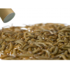 1 kg small levende melorme - et fantastisk foder til ederkopper, padder, krybdyr og fugle som holder længe, køb nu!