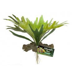 Zoo Med Naturalistic Flora – Staghorn Fern