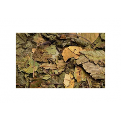 Hugro Tørrede valnøddeblade