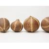 Bellani græskar 4-6cm i diameter - En flot og anderledes dekorations ting til terrariet eller det moderne hjem. Køb online på Mo