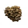 Landskildpaddefoder Pre Alpin Testudo Herbs fuldfoder Produktbillede